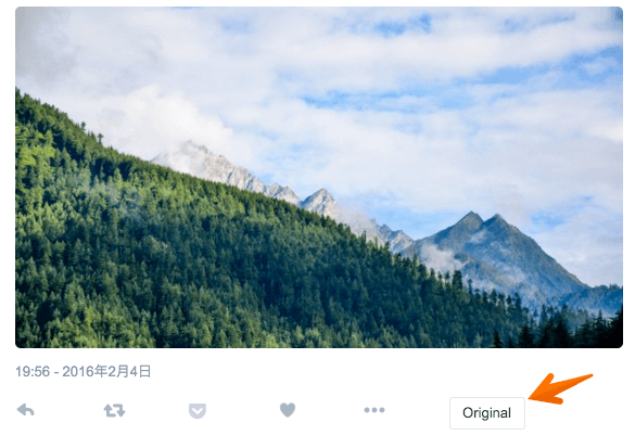 Twitter image orig 02